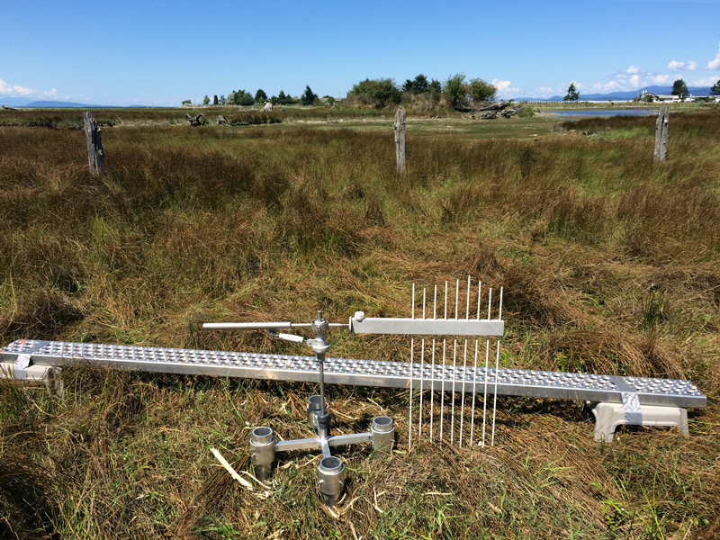 A SET platform and reader arm at the Englishman River Estuary near Parksville, BC.